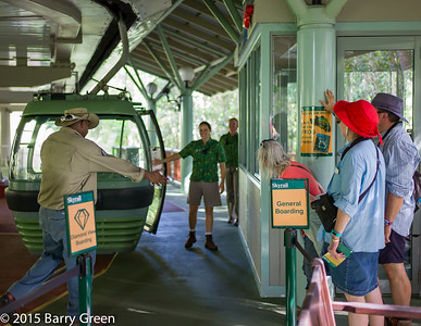 20150125_skyrail_rainforest_cairns_aus_0115