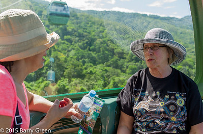 20150125_skyrail_rainforest_cairns_aus_0008
