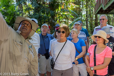 20150125_skyrail_rainforest_cairns_aus_0018