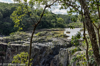 20150125_skyrail_rainforest_cairns_aus_0099