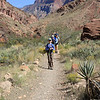 Back on the trail, still on the Tonto Plateau.
