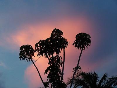 Grand Cayman July 2005