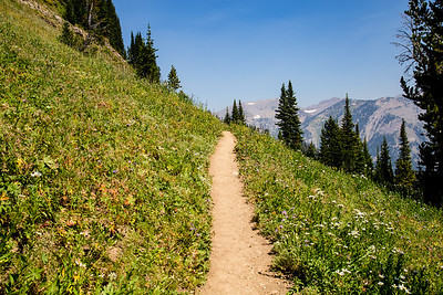 Grand Teton Crest Trail (from Tram  towards Marion Lake)