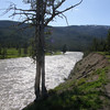 This and the following 8 photos were back in Yellowstone.