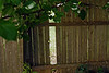 1013 Backyard in Beckley WV