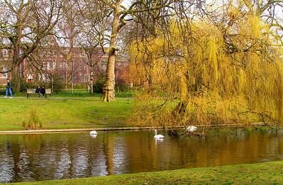 Regents Park, Friday, morning, march 19, 2010