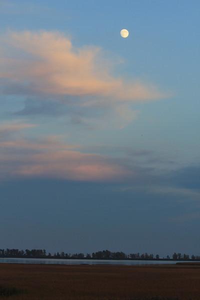 October 9, 2011 (Point Pelee National Park [Point Pelee Boardwalk] / Essex County, Ontario) - Moon over Point Pelee Boardwalk
