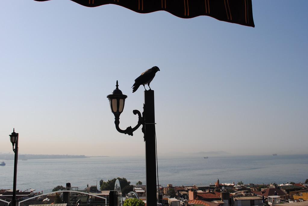 Turkey and Greece Pics 058