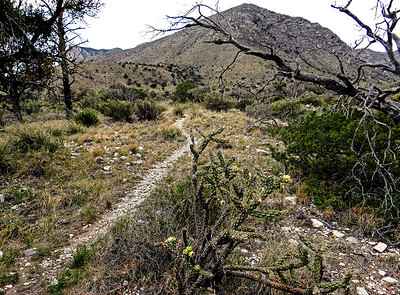 2013 Guadalupe Mountains National Park, Texas