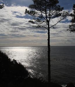 north coast Dec2013 45 of 215