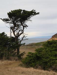 north coast Dec2013 27 of 215