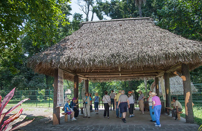 Tour group at Quirigua
