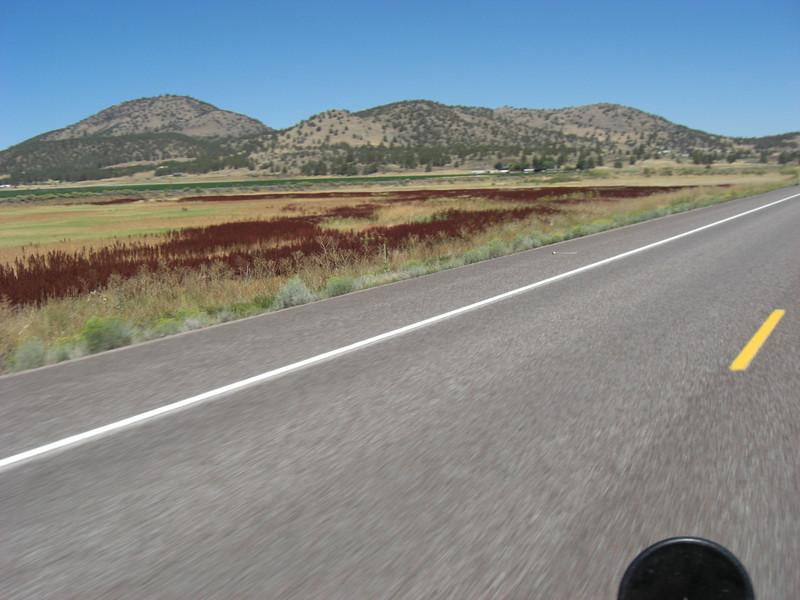 field along highway 97