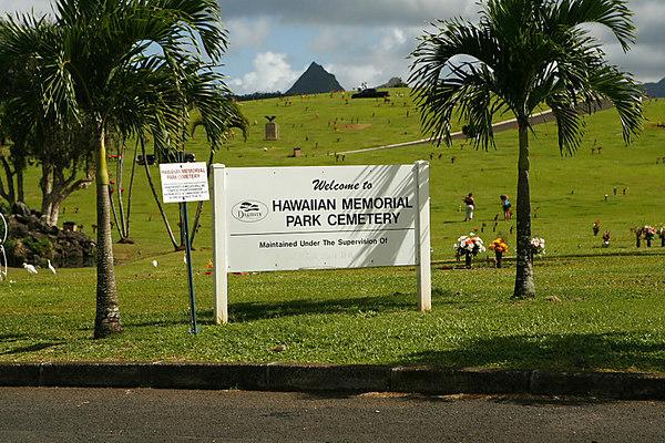HAWAII - MOONIE