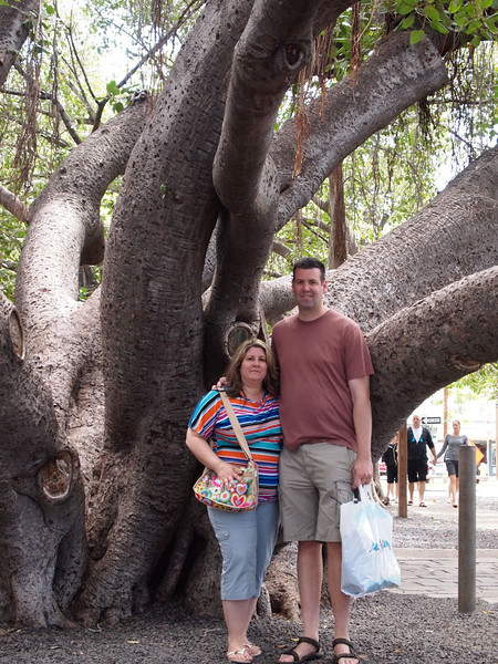 World's largest Banyon tree in downtown Lahaina. The park is the size of an average community park. The tree is growing throughout the entire thing. This picture is at the main trunk.