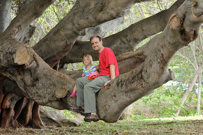 October 17, 2013 - (Whittington Beach County Park / Honu'apo Bay, Hawaii County, Hawaii) --  Ada & Jonathon on a tree