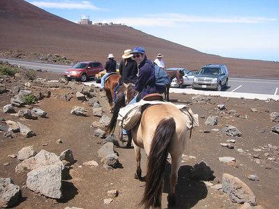 Maui - Horseback riding