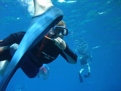 August 15, 2006  Maui - Pride of Maui - Molokini Snorkel. - Mary Beth snuba diving.