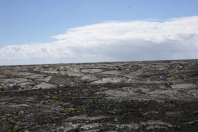 8-13-06 Secrets of Puna - Lava fields - area covered in 75 feet of lava in 1983
