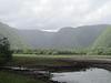 To Pololu Valley - so green!