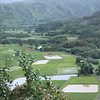 Taro Fields seen from the Hanelei Lookout.