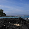 Hilton does not have a proper beach just some rugged lava laden coast