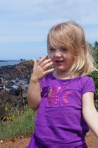 October 12, 2013 -- (North Shore, Waimea, Honolulu County, Hawaii) -- Ada