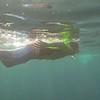 11-13 Snorkel