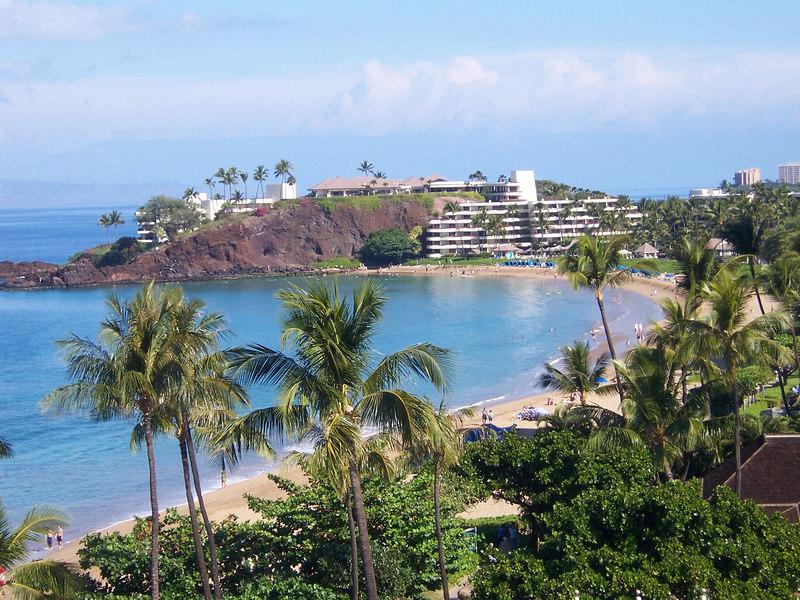 Hello Maui!
