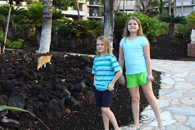 Hawaii March 2015