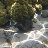 20110517 - Kahaluu Beach Park