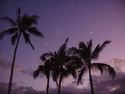 Hawaii (Oahu) 07-27-06 to 08-03-06