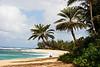 Palms at Sunset Beach