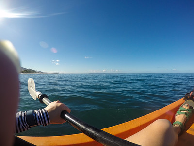 Maui, Day 5: Kayaking with Lahaina Paddle.
