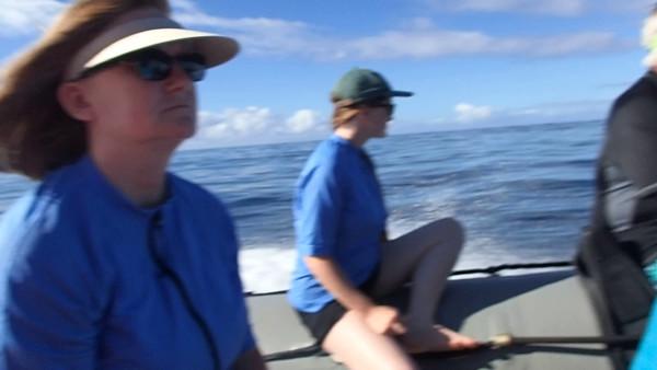 Other Hawaiian Videos