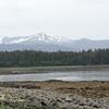 Juneau 29