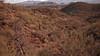 Looking back toward the starting point along the upper Sonoran desert terrain.
