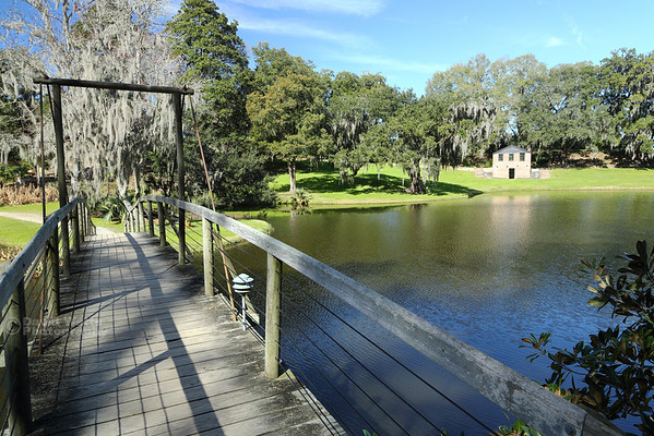 Rice Mill Pond