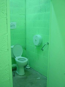No, there is nothing wrong with this picture, this is the *actual* color of the bathrooms at the factory!