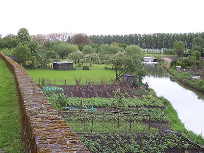 Community gardens outside the dike wall in the small, old, Dutch town of Buren.