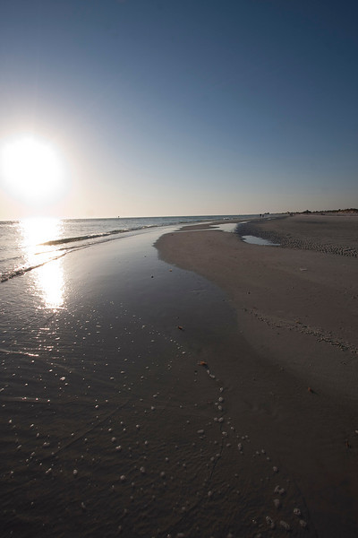 honeymoon island-3415
