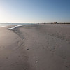 honeymoon island-3414