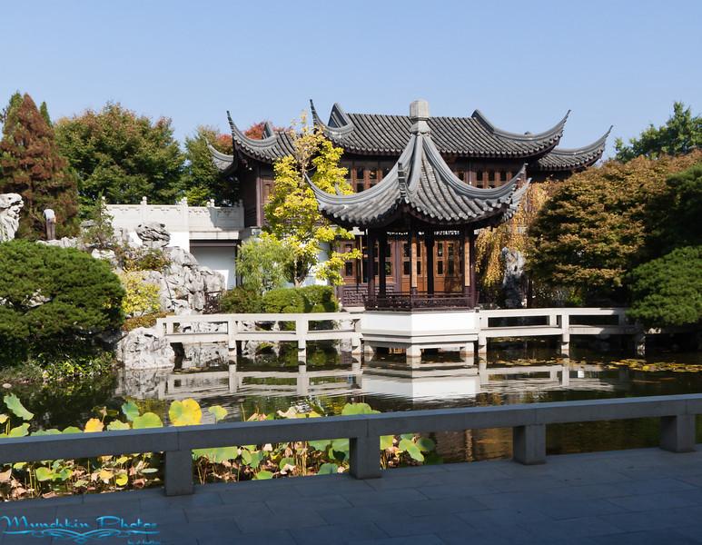 inner part of chinesee garden