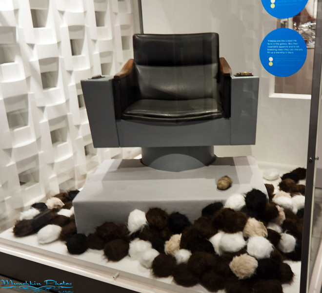 Captain Kirk's chair from the orginal Star Trek Series and tribbles