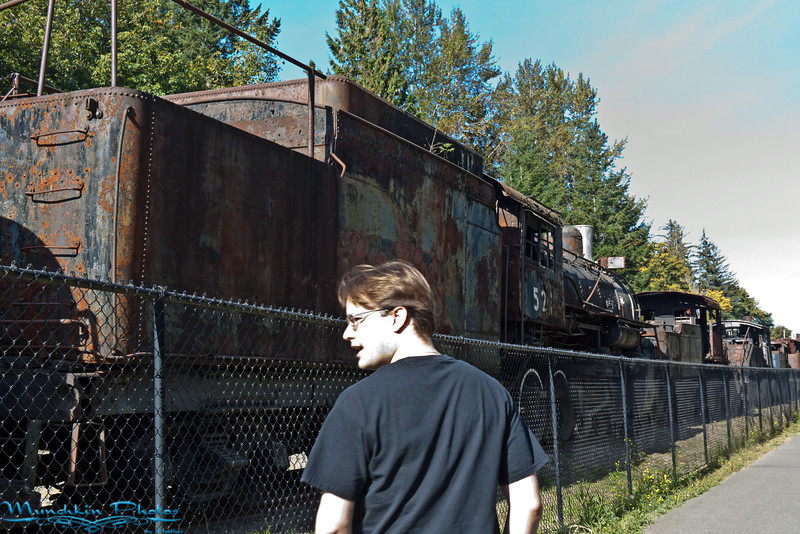 rusty trains in the town of Snoqualmie