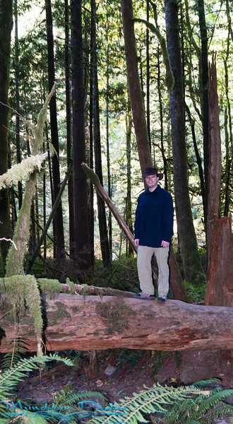 Jim on a fallen tree