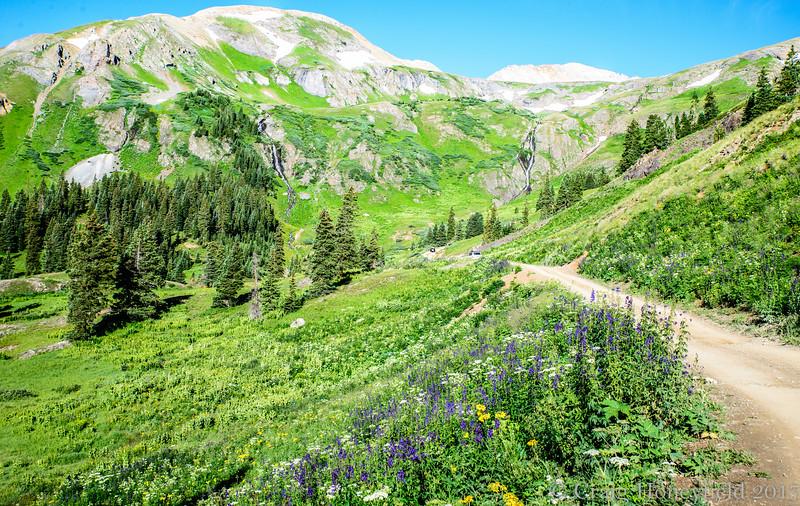 Amnazing lush landscape, Black Bear trail