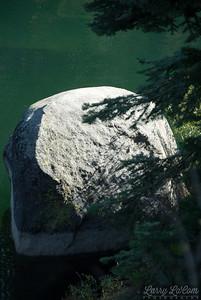 It's a Rock