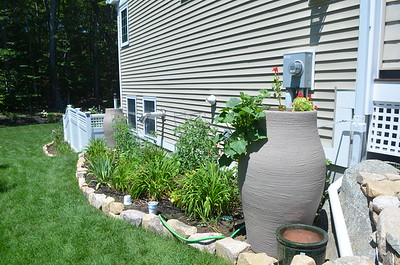 Water barrels that get filled from gutter downspouts.  Garden along side of house.
