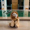 Lion in the loby of the ITC Gardenia.